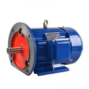 Electric motor three phase 2/4/6/8 pole General Purpose B35 (flange with foot) AC motor