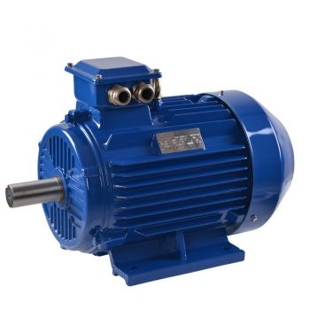 Electric motor three phase 2/4/6/8 pole General Purpose B3 (feet) AC motor